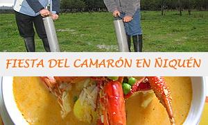 Fiesta del Camarón en Ñiquén