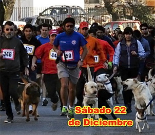 Corrida con Mascota