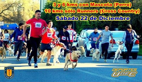 Corrida con Mascota 2012