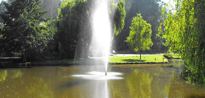 Fuente de Agua Universidad de Concepción