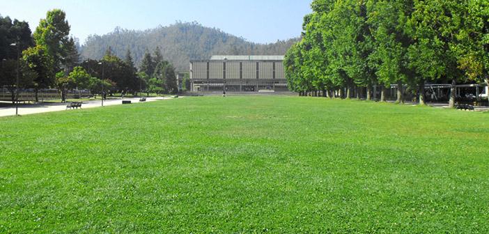 Biblioteca Universidad de Concepción