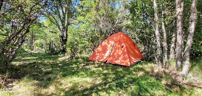 Camping en Llaima